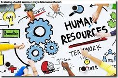 training human resources audit murah