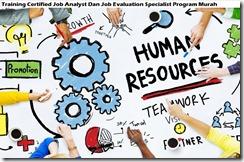 training sertifikasi analisis pekerjaan dan spesialis program evaluasi pekerjaan murah
