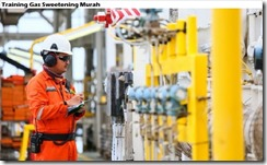 training gas sweetening h2s and co2 removal murah