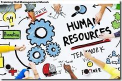 training human resource development management murah