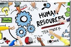 training human resources development murah
