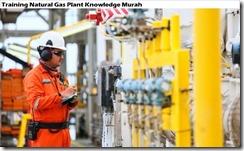 training pengetahuan tentang tanaman gas alam murah
