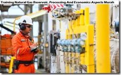 training reservoir gas alami, pengolahan dan aspek ekonomi murah