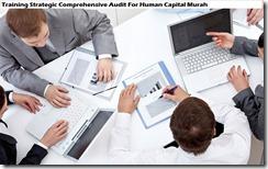 training audit komprehensif strategis untuk modal manusia murah