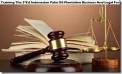 training indonesian palm oil plantation business murah